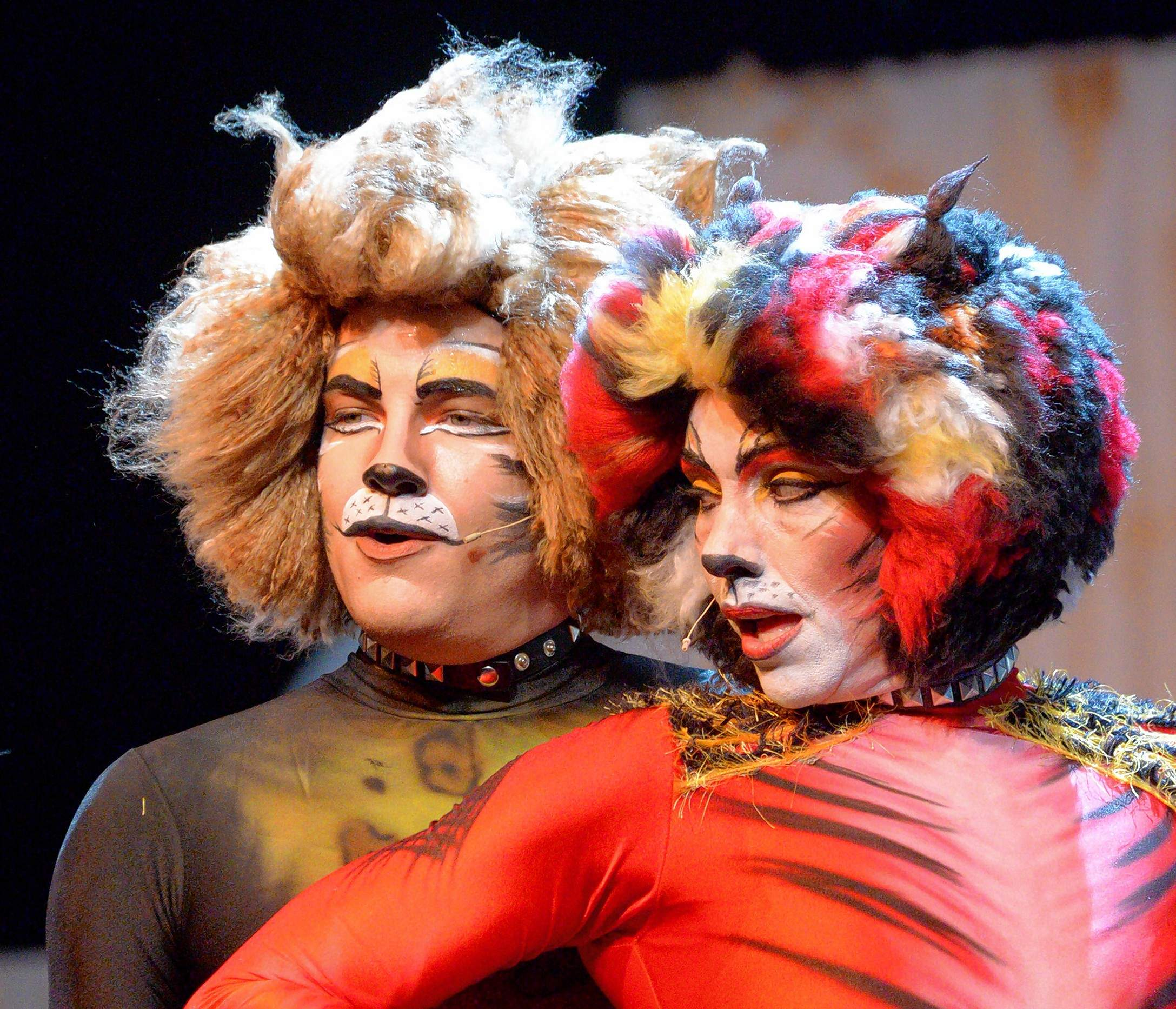The costumes and makeup in Skyline Creek Production Company's staging of 'CATS' at Marion Cultural & Civic Center are impressive.