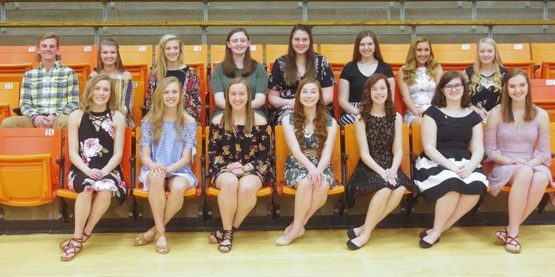 Newly inducted into the CHS Summit Chapter of the National Honor Society are, front row, from left: Kennedy Herrell, Josie Kattenbraker, Peyton Clendenin, Alison Venus, Melody Colonel, Jaci South and Brianna Surman. Back row, from left: Nathaniel Heffernan, Lauren Leathers, Avery Runge, Lily Koch, Lydia Heck, Alana Meyer, Ryn Petrowske and Cara Childs.Not pictured: Sylena Martin.