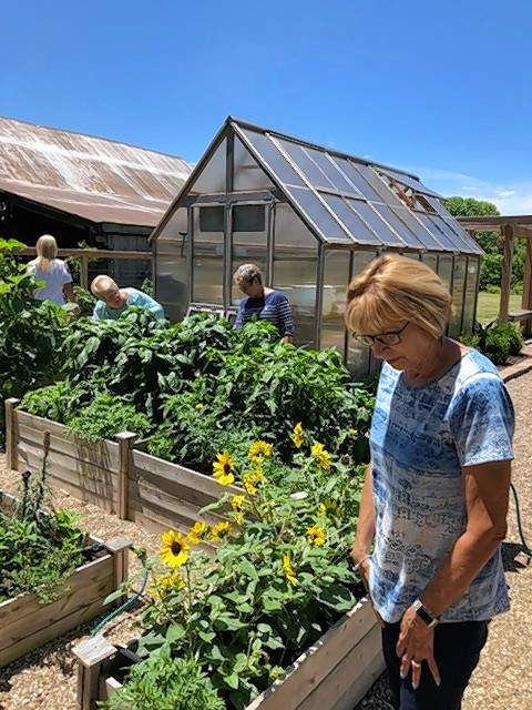 Club member Liz Garrett, left, admires flowers growing in one of the many raised beds within the garden fence.