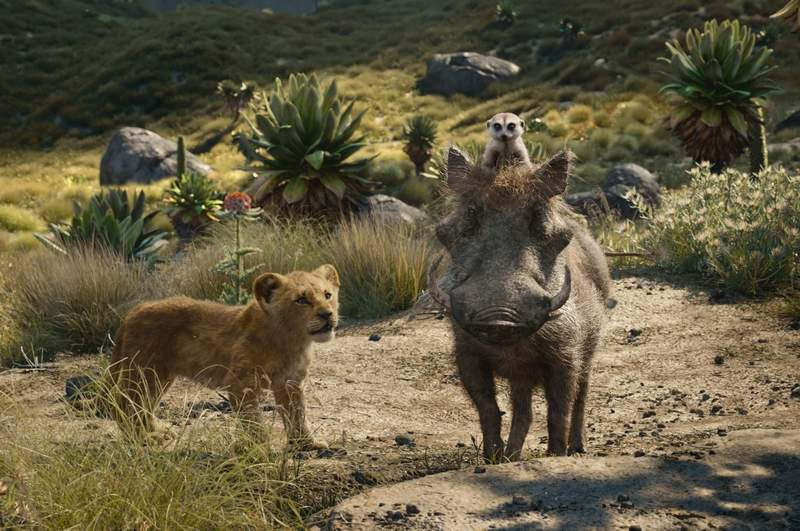 Young Simba (voiced by JD McCrary), Timon (Billy Eichner) and Pumbaa (Seth Rogen) take to the open jungle road in Jon Favreau's remake of Disney's 'The Lion King.'
